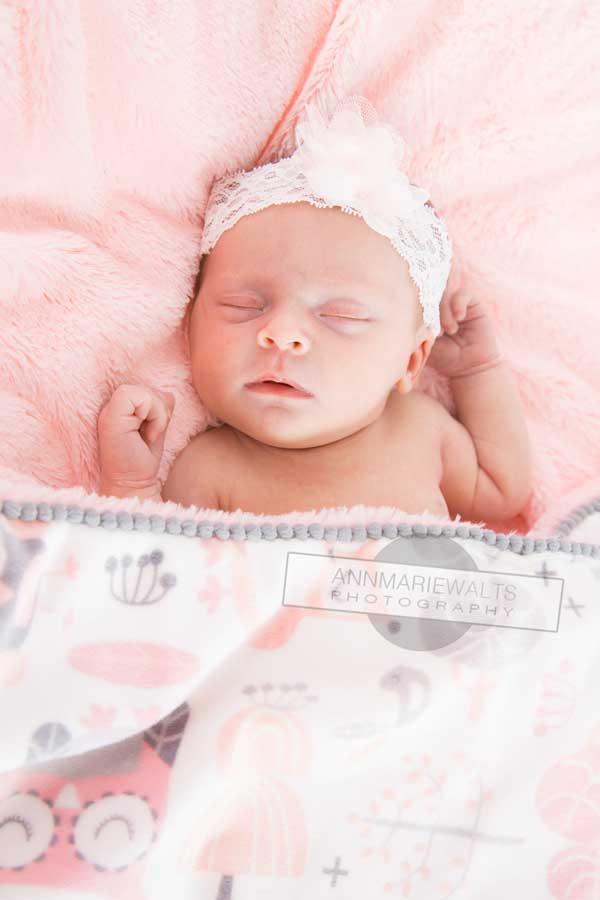 Newborn photographer near me ann marie walts